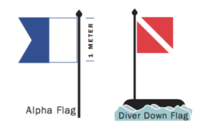 Image of diver flags - alpha and diver down
